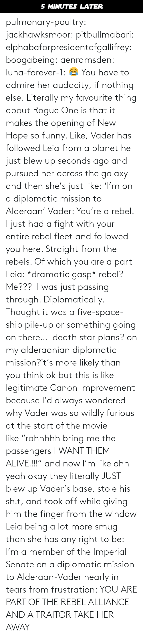 "Death Star: 5 MINUTES LATER pulmonary-poultry:  jackhawksmoor:  pitbullmabari:  elphabaforpresidentofgallifrey:  boogabeing:  aenramsden:  luna-forever-1: 😂 You have to admire her audacity, if nothing else.  Literally my favourite thing about Rogue One is that it makes the opening of New Hope so funny. Like, Vader has followed Leia from a planet he just blew up seconds ago and pursued her across the galaxy and then she's just like: 'I'm on a diplomatic mission to Alderaan' Vader: You're a rebel. I just had a fight with your entire rebel fleet and followed you here. Straight from the rebels. Of which you are a part Leia: *dramatic gasp* rebel? Me???  I was just passing through. Diplomatically. Thought it was a five-space-ship pile-up or something going on there…   death star plans? on my alderaanian diplomatic mission?it's more likely than you think   ok but this is like legitimate Canon Improvement because I'd always wondered why Vader was so wildly furious at the start of the movie like ""rahhhhh bring me the passengers I WANT THEM ALIVE!!!!"" and now I'm like ohh yeah okay they literally JUST blew up Vader's base, stole his sh!t, and took off while giving him the finger from the window    Leia being a lot more smug than she has any right to be: I'm a member of the Imperial Senate on a diplomatic mission to Alderaan-Vader nearly in tears from frustration: YOU ARE PART OF THE REBEL ALLIANCE AND A TRAITOR TAKE HER AWAY"