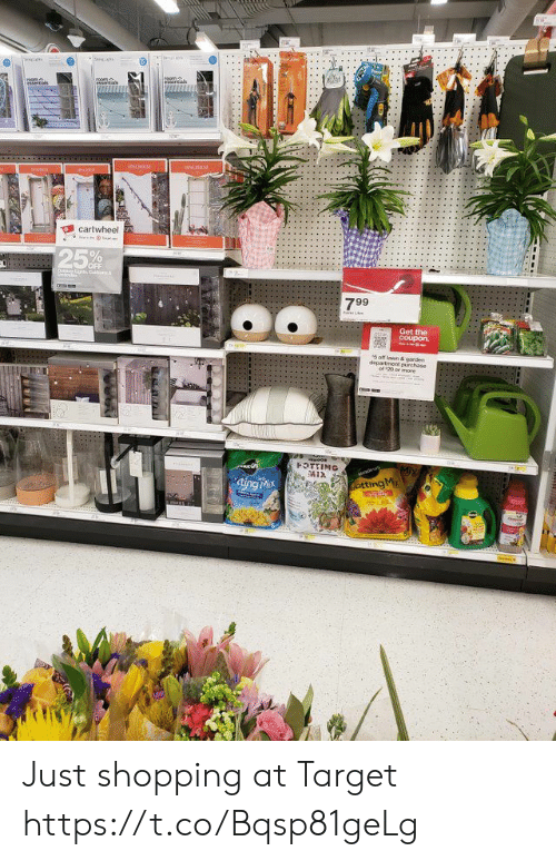 Shopping, Target, and Faces-In-Things: 5%  OFF  799  Get the  5 off lawn & garden Just shopping at Target https://t.co/Bqsp81geLg