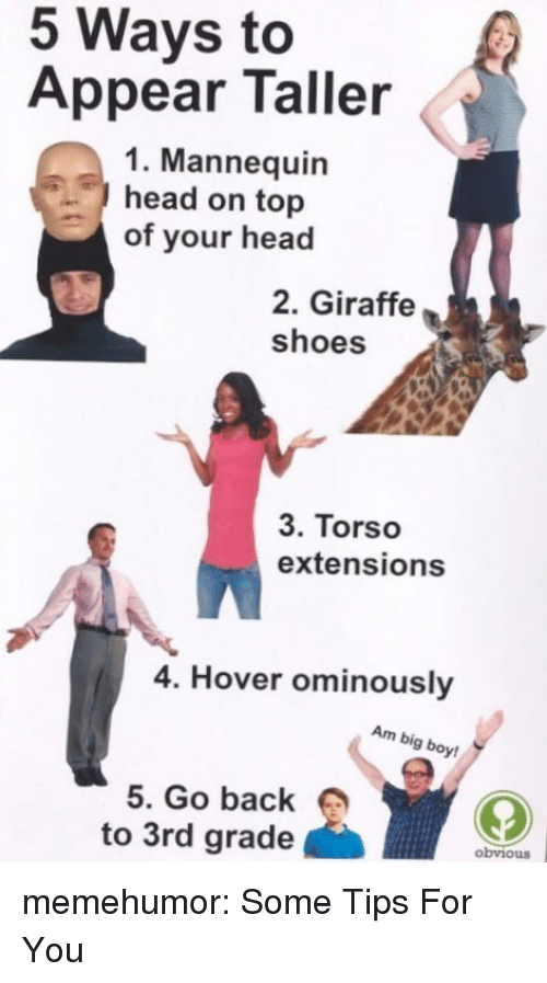 Head, Shoes, and Tumblr: 5 Ways to  Appear Taller  1. Mannequin  head on top  of your head  2. Giraffe  shoes  3. Torso  extensions  4. Hover ominously  Am big boy  5. Go back  to 3rd grade  obviouS memehumor:  Some Tips For You