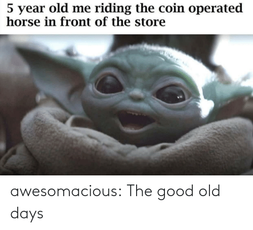 Horse: 5 year old me riding the coin operated  horse in front of the store awesomacious:  The good old days