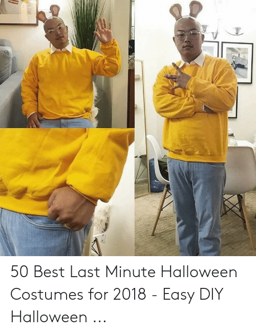 Halloween, Best, and Halloween Costumes: 50 Best Last Minute Halloween Costumes for 2018 - Easy DIY Halloween ...