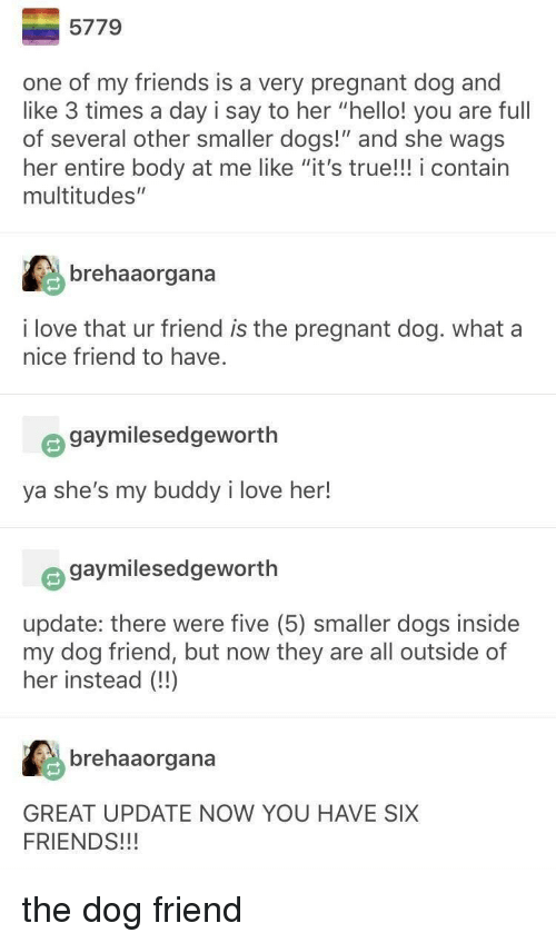 "Dogs, Friends, and Hello: 5779  one of my friends is a very pregnant dog and  like 3 times a day i say to her ""hello! you are full  of several other smaller dogs!"" and she wags  her entire body at me like ""it's true!!! i contain  multitudes""  :台  brehaaorgana  i love that ur friend is the pregnant dog. what a  nice friend to have.  gaymilesedgeworth  ya she's my buddy i love her!  e gaymilesedgeworth  update: there were five (5) smaller dogs inside  my dog friend, but now they are all outside of  her instead (!)  brehaaorgana  GREAT UPDATE NOW YOU HAVE SIX  FRIENDS!!! the dog friend"