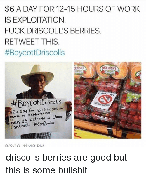 Memes, Work, and Fuck: $6 A DAY FOR 12-15 HOURS OF WORK  IS EXPLOITATION  FUCK DRISCOLL'S BERRIES  RETWEET THIS.  #BoycottDriscolls  MANN'S  BUY  #Boycot+Driscolls  o a day for 12-15 hours o  Sr hours of  work 1 exploitation  Help U5 ochieve a Union  Contract. #Sarauintin  212 16 11.48 DNA driscolls berries are good but this is some bullshit