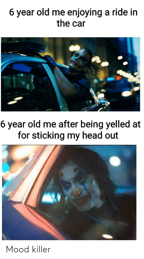 Head, Mood, and Dank Memes: 6 year old me enjoying a ride in  the car  6 year old me after being yelled at  for sticking my head out Mood killer