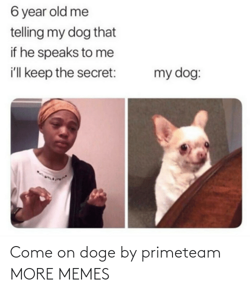 My Dog: 6 year old me  telling my dog that  if he speaks to me  i'll keep the secret:  my dog: Come on doge by primeteam MORE MEMES