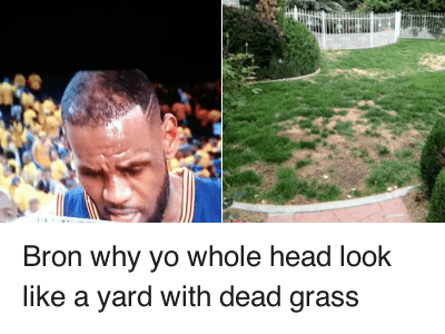 Ã…¤: Bron why yo whole head look like a yard With dead grass Bron why yo whole head look like a yard with dead grass