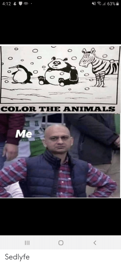 Animals, Color, and The Animals: 63%  4:12  COLOR THE ANIMALS  Me  0  0 Sedlyfe