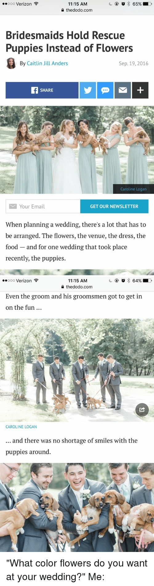 "Groomsmen: 65%  ooooo Verizon  11:15 AM  the dodo.com  Bridesmaids Hold Rescue  Puppies Instead of Flowers  By Caitlin Jill Anders  Sep. 19, 2016  SHARE  Caroline Logan  M Your Email  GET OUR NEWSLETTER  When planning a wedding, there's a lot that has to  be arranged. The flowers, the venue, the dress, the  food and for one wedding that took place  recently, the puppies.   64% LD  ooooo Verizon  11:15 AM  the dodo.com  Even the groom and his groomsmen got to get in  on the fun  CAROLINE LOGAN  and there was no shortage of smiles with the  puppies around ""What color flowers do you want at your wedding?"" Me:"