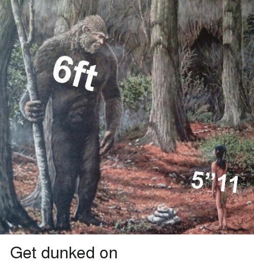 dunked on: 6ft  511 Get dunked on