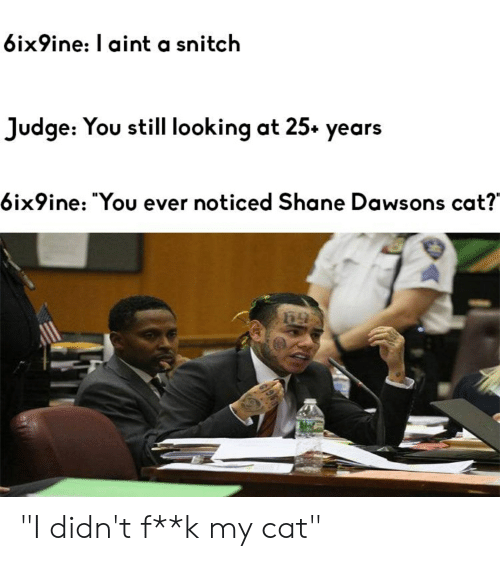 "Snitch, Shane, and Cat: 6ix9ine: l aint a snitch  Judge: You still looking at 25» years  6ix9ine: ""You ever noticed Shane Dawsons cat? ""I didn't f**k my cat"""