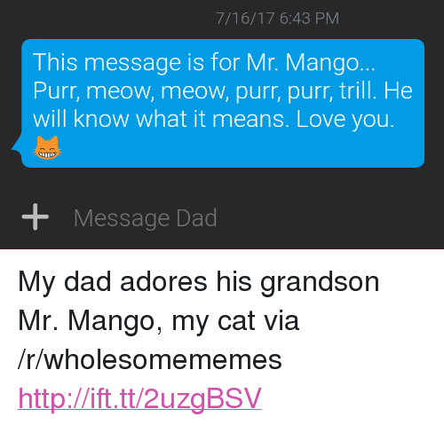 "Dad, Love, and Http: 7/16/17 6:43 PM  This message is for Mr. Mango.  Purr, meow, meow, purr, purr, trill. He  will know what it means. Love you.  +Message Dad <p>My dad adores his grandson Mr. Mango, my cat via /r/wholesomememes <a href=""http://ift.tt/2uzgBSV"">http://ift.tt/2uzgBSV</a></p>"