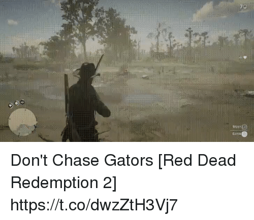 awwmemes.com: 70  STuey  GATOS Don't Chase Gators [Red Dead Redemption 2] https://t.co/dwzZtH3Vj7