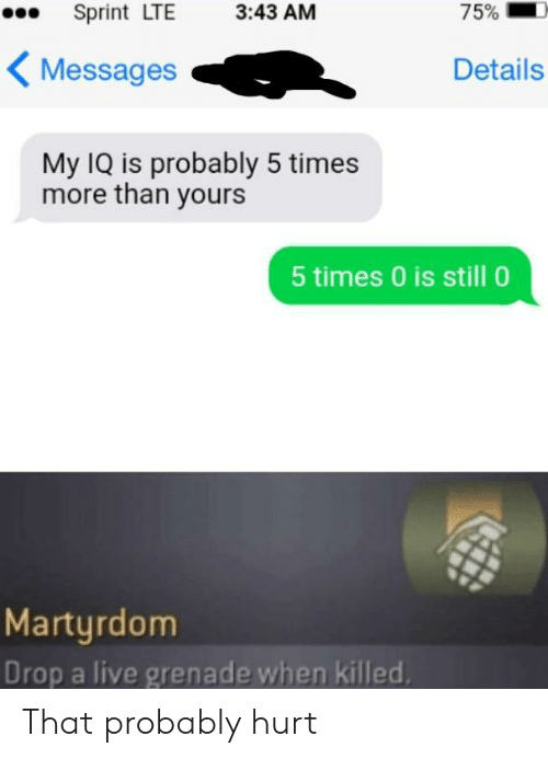 Drop A: 75%  Sprint LTE  3:43 AM  Messages  Details  My IQ is probably 5 times  more than yours  5 times 0 is still 0  Martyrdom  Drop a live grenade when killed That probably hurt