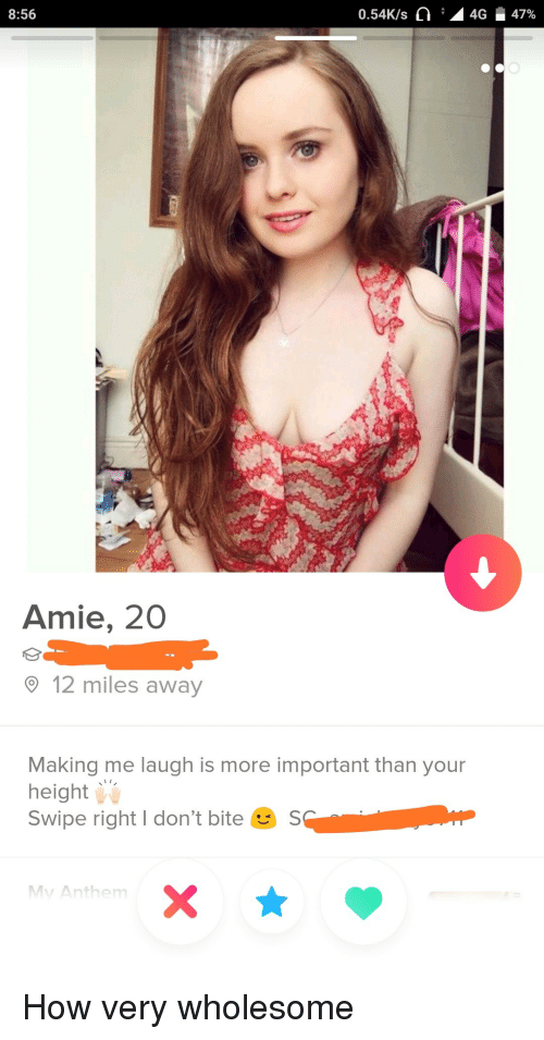 Amie: 8:56  0.54K/s C :  4G  47%  Amie, 20  12 miles away  Making me laugh is more important than your  height  Swipe right I don't bite S  Mv Anthem How very wholesome