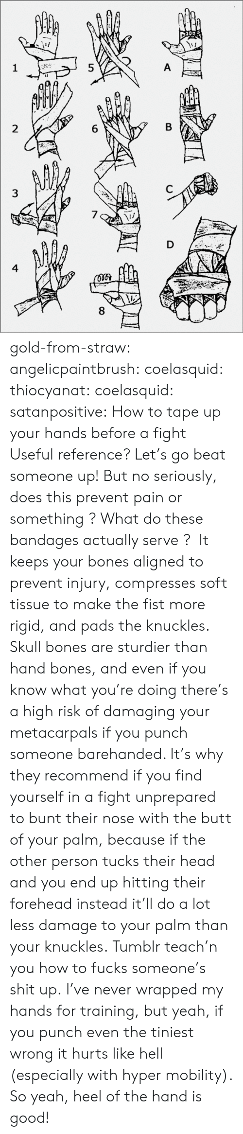 heel: 8  6  5  3  4 gold-from-straw:  angelicpaintbrush:  coelasquid:  thiocyanat:  coelasquid:  satanpositive:  How to tape up your hands before a fight  Useful reference?  Let's go beat someone up! But no seriously, does this prevent pain or something ? What do these bandages actually serve ?   It keeps your bones aligned to prevent injury, compresses soft tissue to make the fist more rigid, and pads the knuckles. Skull bones are sturdier than hand bones, and even if you know what you're doing there's a high risk of damaging your metacarpals if you punch someone barehanded. It's why they recommend if you find yourself in a fight unprepared to bunt their nose with the butt of your palm, because if the other person tucks their head and you end up hitting their forehead instead it'll do a lot less damage to your palm than your knuckles.  Tumblr teach'n you how to fucks someone's shit up.   I've never wrapped my hands for training, but yeah, if you punch even the tiniest wrong it hurts like hell (especially with hyper mobility). So yeah, heel of the hand is good!