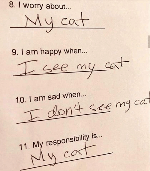 Responsibility: 8. I worry about...  My cat  9.1 am happy when...  see my co  Cant  10. I am sad when...  dont ste my  ca  11. My responsibility is...  My cat