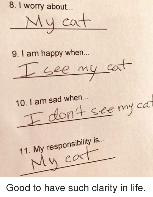 Life, Memes, and Good: 8. I worry about...  My cot  9. I am happy when..  cort  10. I am sad when..  dont see my cad  11. My responsibility is...  My cat Good to have such clarity in life.