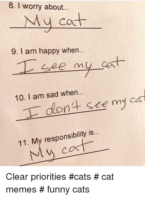 Cat Memes Funny: 8. I worry about.  My cot  9. I am happy when...  at  10. I am sad when...  nt see myca  11. My responsibility is. Clear priorities  #cats # cat memes # funny cats
