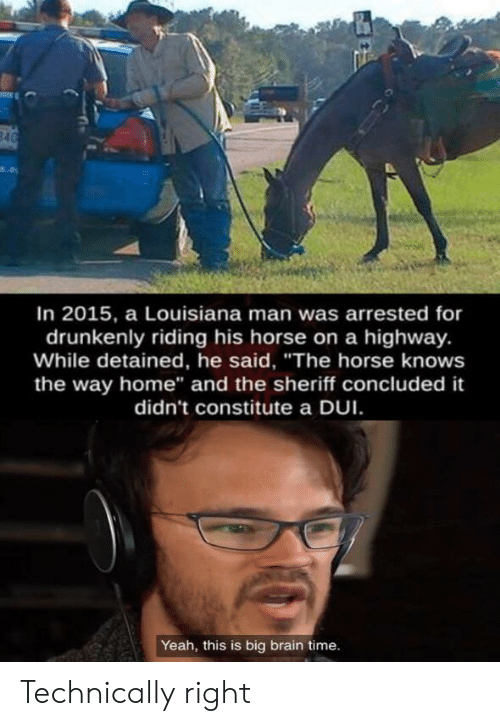 "Yeah, Brain, and Home: 840  In 2015, a Louisiana man was arrested for  drunkenly riding his horse on a highway.  While detained, he said, ""The horse knows  the way home"" and the sheriff concluded it  didn't constitute a DUI  Yeah, this is big brain time. Technically right"