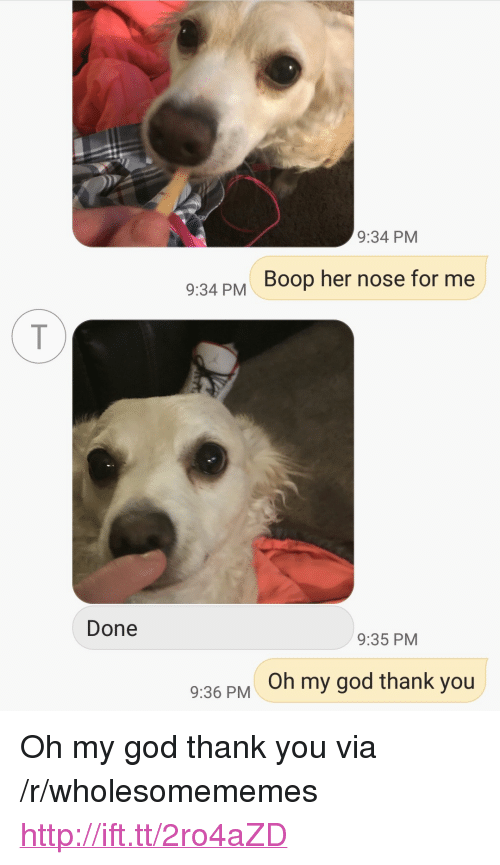 """God, Oh My God, and Thank You: 9:34 PM  934PM Boop her nose for me  Done  9:35 PM  Oh my god thank you  9:36 PM <p>Oh my god thank you via /r/wholesomememes <a href=""""http://ift.tt/2ro4aZD"""">http://ift.tt/2ro4aZD</a></p>"""