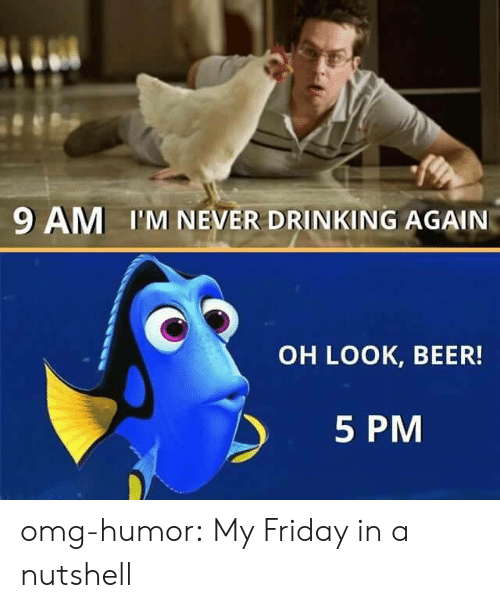 Oh Look: 9 AM I'M NEVER DRINKING AGAIN  OH LOOK, BEER!  5 PM omg-humor:  My Friday in a nutshell