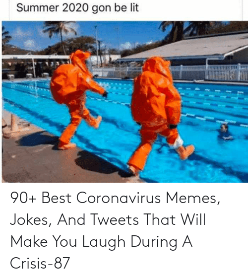 crisis: 90+ Best Coronavirus Memes, Jokes, And Tweets That Will Make You Laugh During A Crisis-87