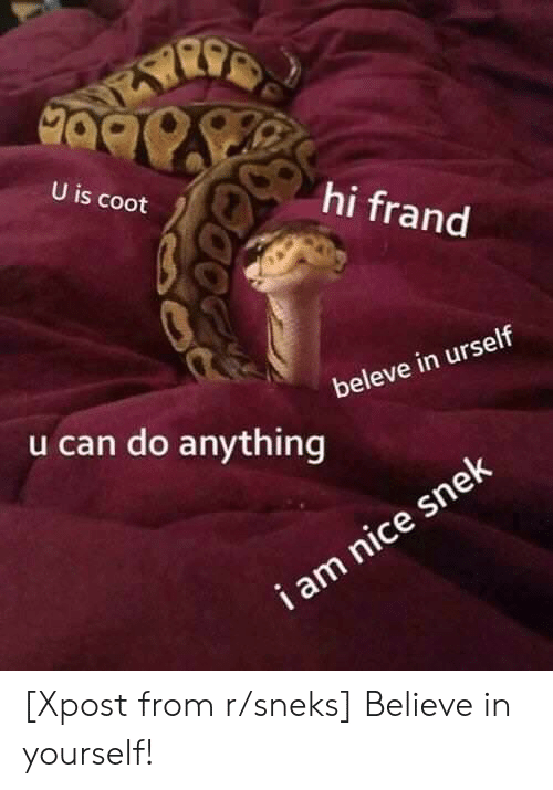 Nice, Can, and Believe: 90  U is coot  hi frand  beleve in urself  u can do anything  snek  nice [Xpost from r/sneks] Believe in yourself!