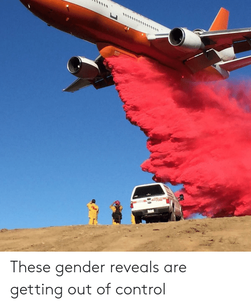 out of control: 910 These gender reveals are getting out of control