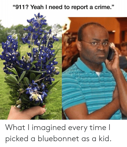 "Crime, Yeah, and Texas: ""911? Yeah I need to report a crime."" What I imagined every time I picked a bluebonnet as a kid."