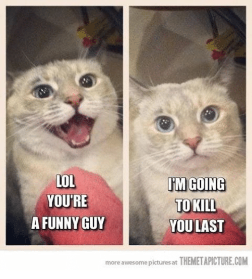 Funniness: LOL  IM GOING  YOURE  TO KILL  A FUNNY GUY  YOULAST  more awesome pictures at THEMETAPICTURE.COM