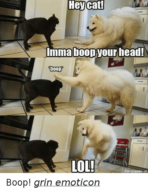 Booped
