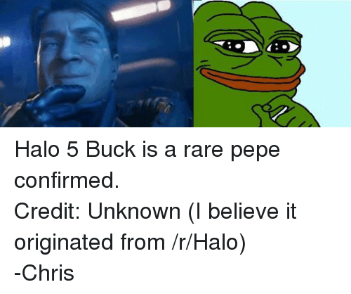 Rare Pepes: Halo 5 Buck is a rare pepe confirmed. Credit: Unknown (I believe it originated from /r/Halo) -Chris