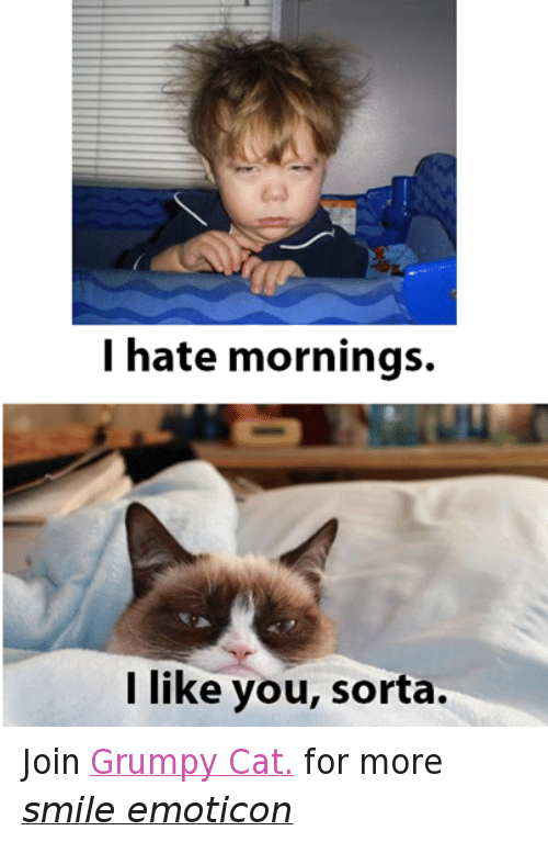 i hate mornings: I hate mornings.  I like you, sorta. Join Grumpy Cat. for more smile emoticon