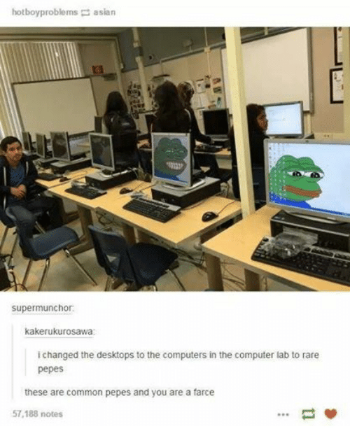 Rare Pepes: hotboy problems asian  supermunchor:  kakerukurosawa  i changed the desktops to the computers in the computer lab to rare  pepes  these are common pepes and you are a farce  57,188 notes