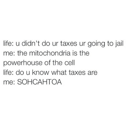 Going To Jail