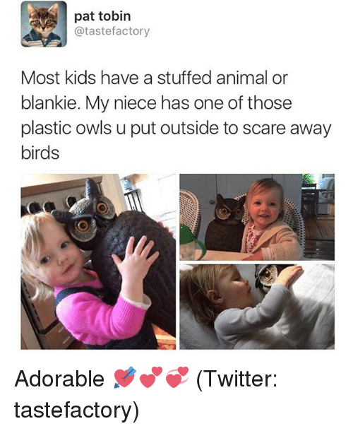 Blanky: pat tobin  atastefactory  Most kids have a stuffed animal or  blankie. My niece has one of those  plastic owls u put outside to scare away  birds Adorable 💘💕💞 (Twitter: tastefactory)