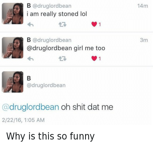 Funniness: B @drug lord bean  i am really stoned lol  B (a rug lordbean  adruglordbean girl me too  drug lordbean  druglordbean oh shit dat me  2/22/16, 1:05 AM  14m  3m Why is this so funny