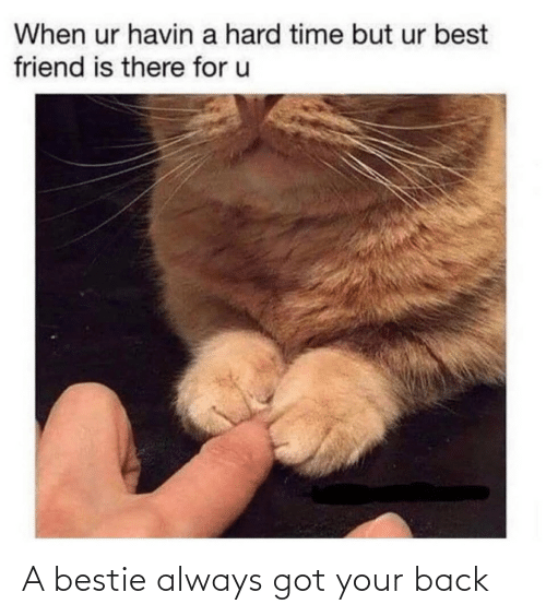 got: A bestie always got your back