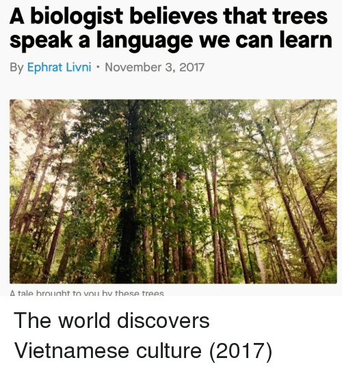 Trees, World, and Vietnamese: A biologist believes that trees  speak a language we can learn  By Ephrat Livni November 3, 2017  tale brought to vou by these trees The world discovers Vietnamese culture (2017)
