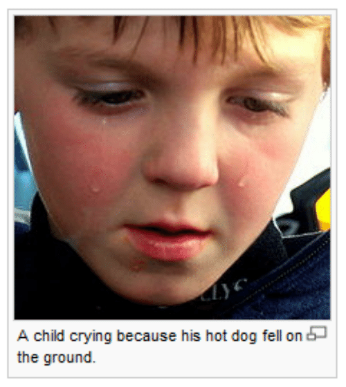 Crying, Dog, and Hot Dog: A child crying because his hot dog fell on  the ground.
