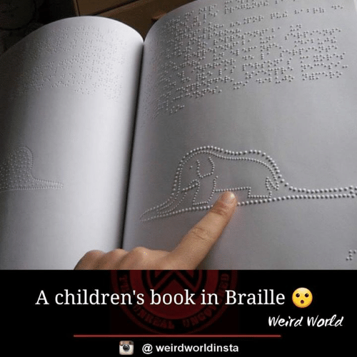 Memes, Weird, and Book: A children's book in Braille O  Weird Wodd  @ weirdworldinsta