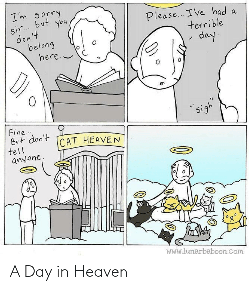 A Day: A Day in Heaven