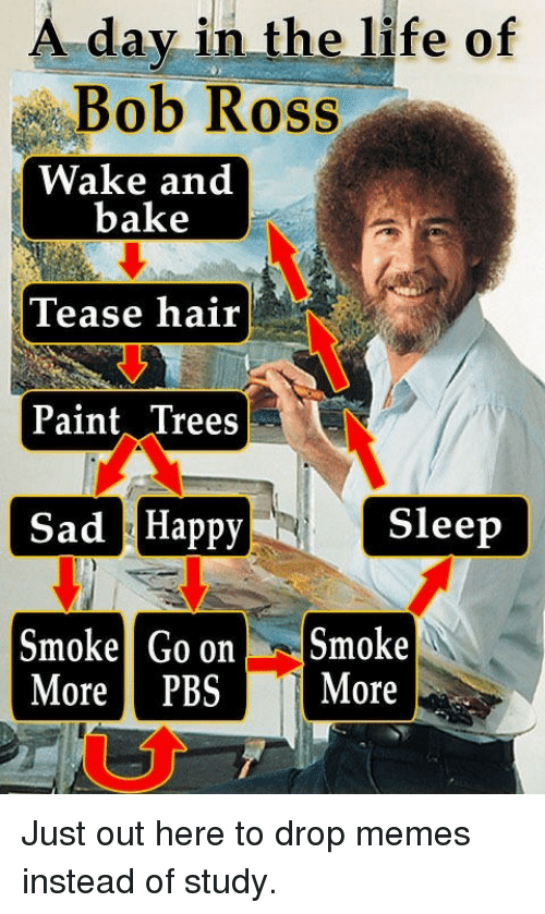 tease: A day in the life of  Bob Ross  Wake and  bake  Tease hair  Paint Trees  Sad Happy  Smoke Go onSmoke  Sleep  More PBS More Just out here to drop memes instead of study.