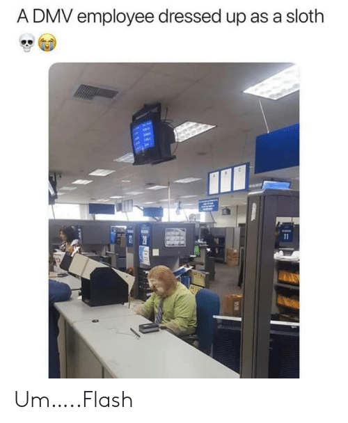 Dressed Up: A DMV employee dressed up as a sloth  11 Um…..Flash