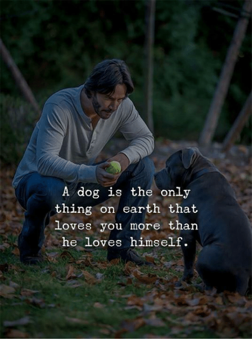 Earth, Dog, and Thing: A dog is the only  thing on earth that  loves you more than  he loves himself.