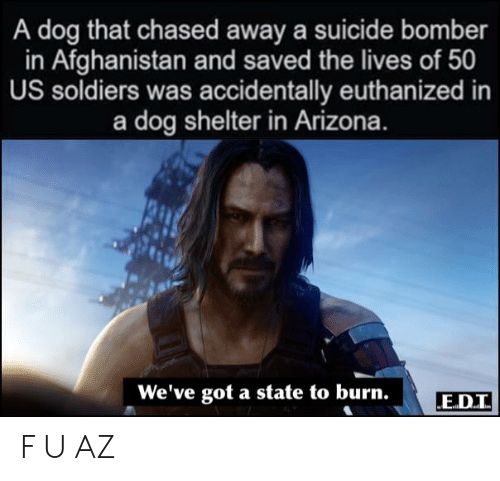 Soldiers, Afghanistan, and Arizona: A dog that chased away a suicide bomber  in Afghanistan and saved the lives of 50  US soldiers was accidentally euthanized in  a dog shelter in Arizona.  We've got a state to burn.  E.D.I F U AZ