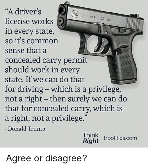 "Donald Trump, Driving, and Memes: ""A driver's  license works  in every state,  so it's common  sense that a  concealed carry permit  should work in every  state. If we can do that  for driving - which is a privilege,  not a right - then surely we can do  that for concealed carry, which is  a right, not a privilege.""  Donald Trump  OcK 42 USA 380 Auto  Think  Right rpolitics.com Agree or disagree?"