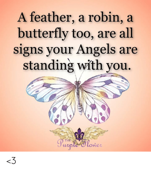 Butterfly: A feather, a robin, a  butterfly too, are all  signs your Angels are  standing with you.  THE  Purple'Tlower <3