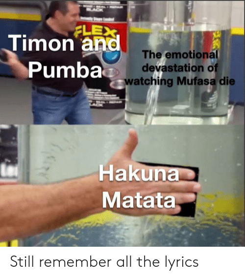 Flexing, Mufasa, and Lyrics: A  FLEX  Timon and  The emotional  devastation of  Pumbawatching Mufasa die  A  Hakuna  Matata Still remember all the lyrics