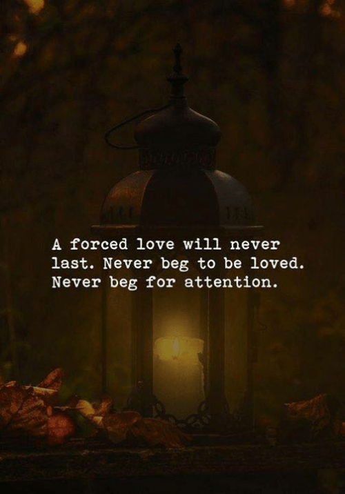 Love, Never, and Will: A forced love will never  last. Never beg to be loved  Never beg for attention.